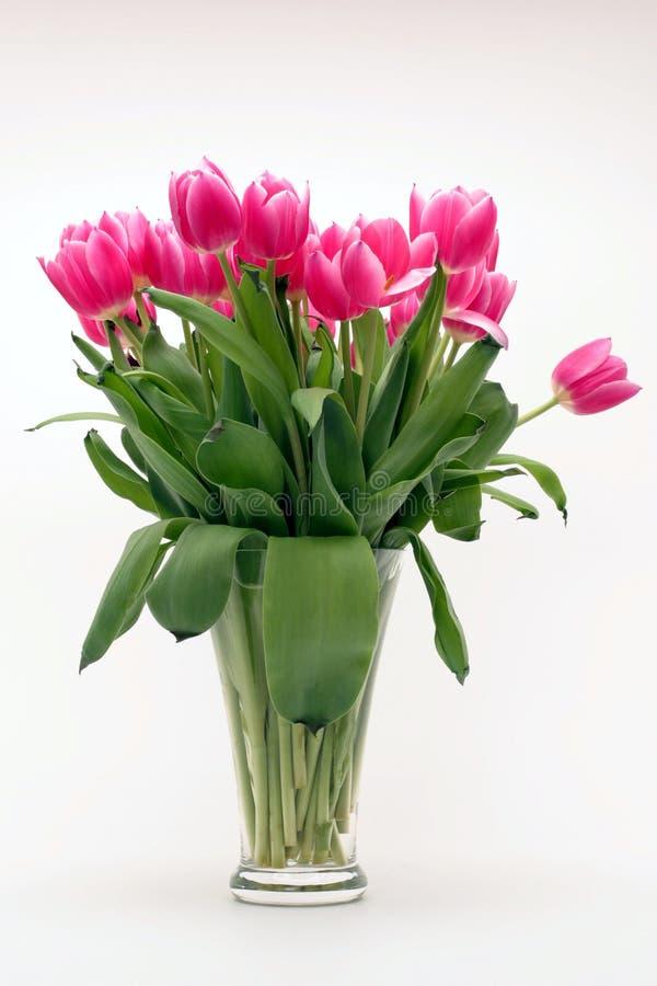 Roze bloemblaadjebloemen royalty-vrije stock foto's