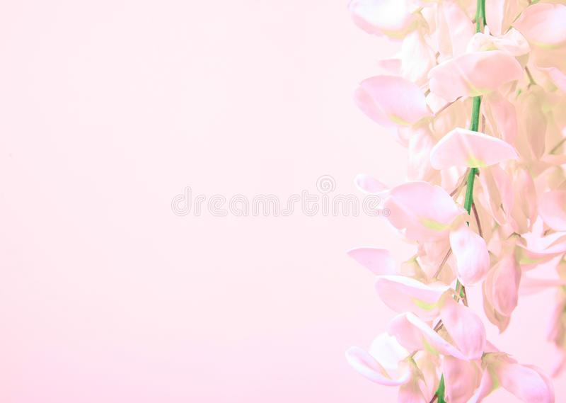 Roze bloembos stock afbeelding