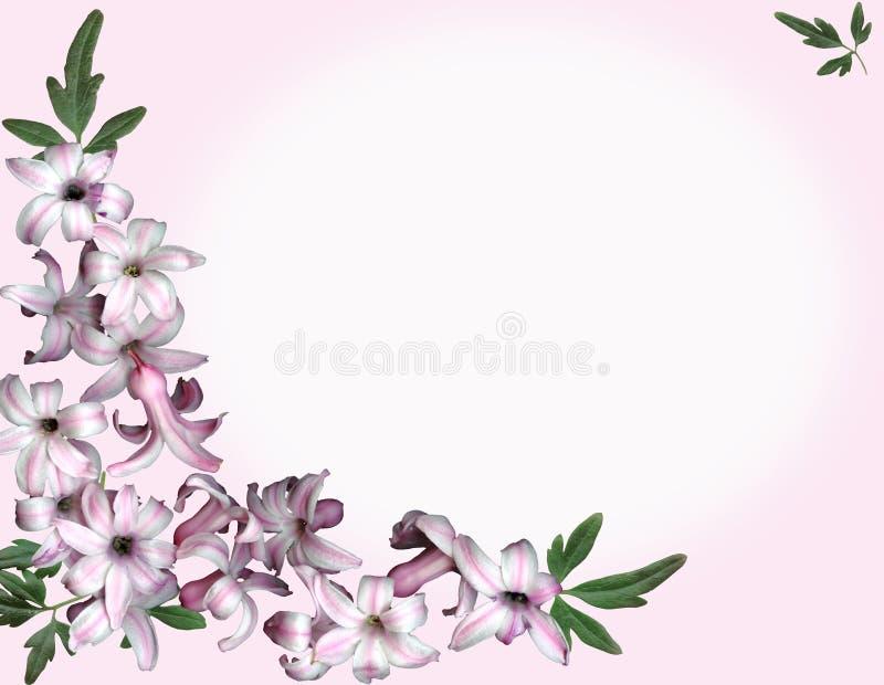 Roze bloemen als achtergrond stock illustratie