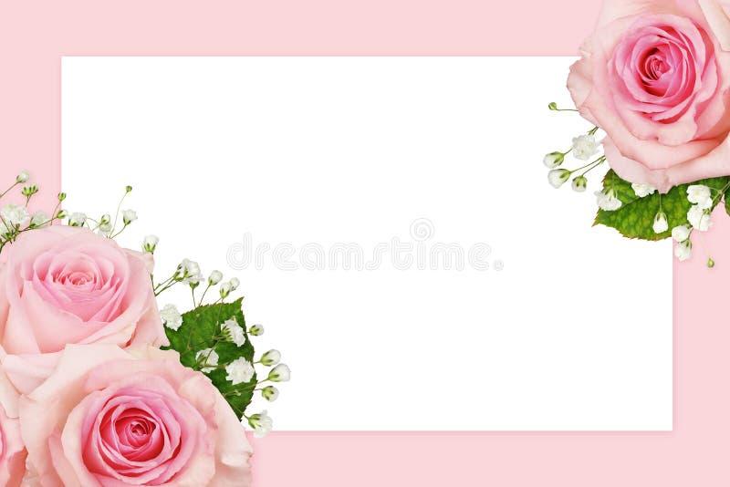 Roze roze bloemen en gypsophila in een hoekflorale set met witte kaart royalty-vrije stock foto