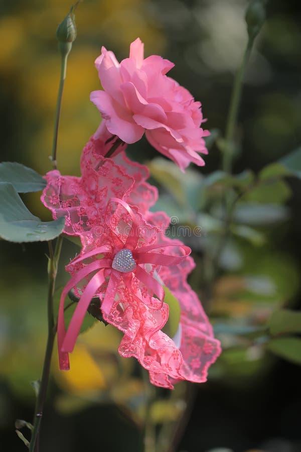 Roze bloemen met granaat stock foto's