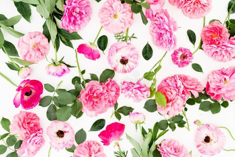 Roze bloemen op witte achtergrond Vlak leg, hoogste mening De pastelkleur bloeit patroon royalty-vrije stock foto