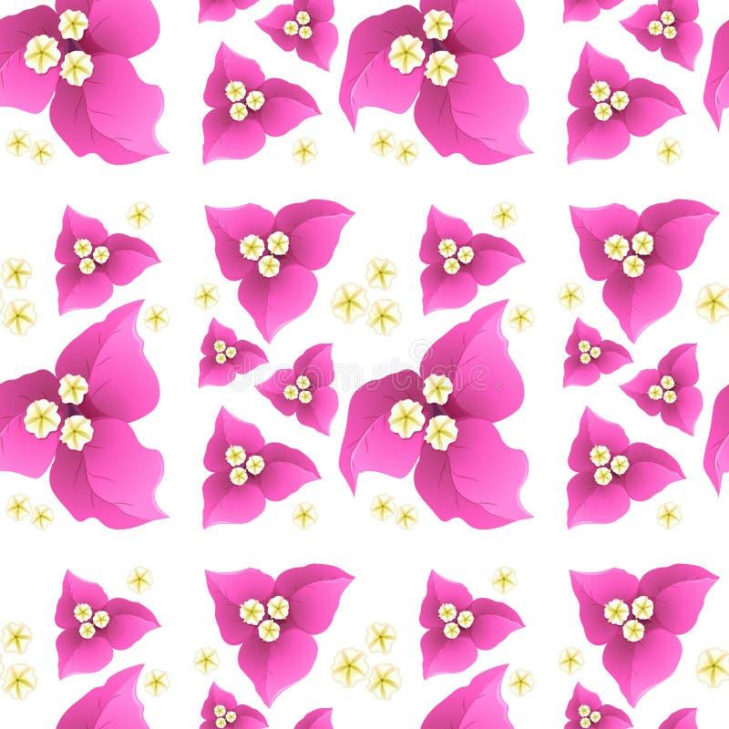 Roze bougainvilleabloemen op naadloze achtergrond vector illustratie