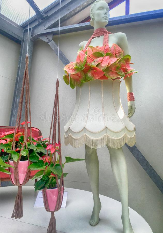 Roze calla lilly floristisch decor en model in bloemserre, royalty-vrije stock afbeelding