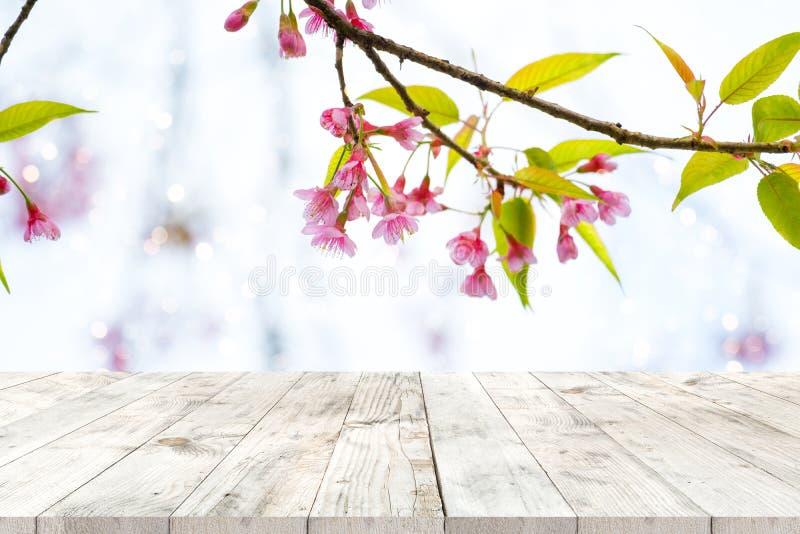 Roze de bloemsakura van de kersenbloesem op hemelachtergrond in lentetijd royalty-vrije stock afbeelding