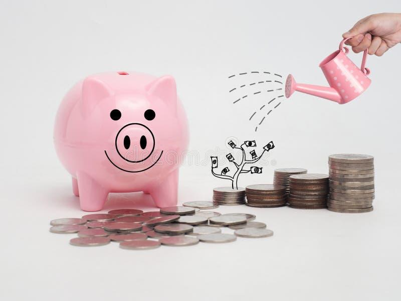 Roze die spaarvarken met muntstukken wordt gevuld op witte achtergrond Besparing i stock afbeeldingen
