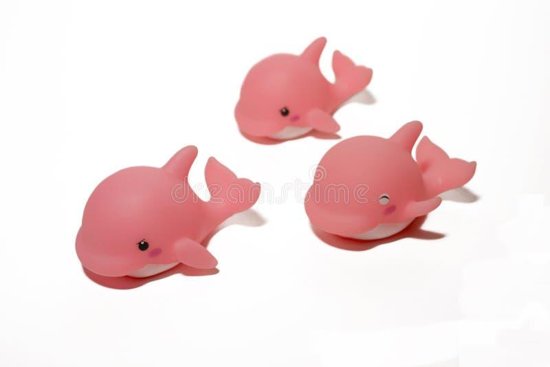 Roze dolfijnen stock afbeeldingen
