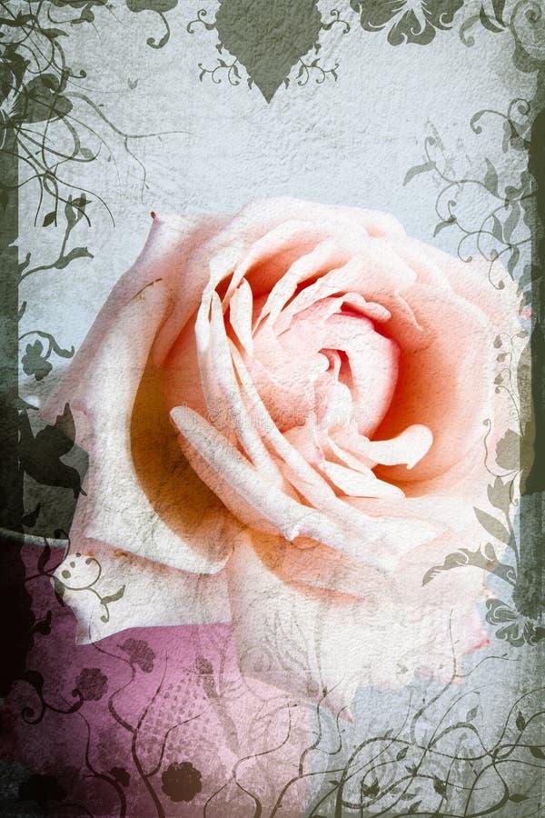Roze en beige nam toe stock illustratie