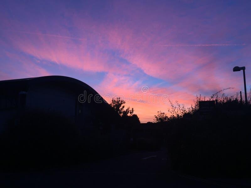 Roze en blauwe hemel stock foto's