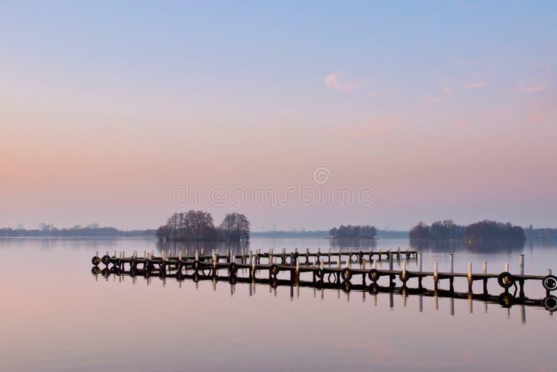 Roze en blauwe meermening stock fotografie