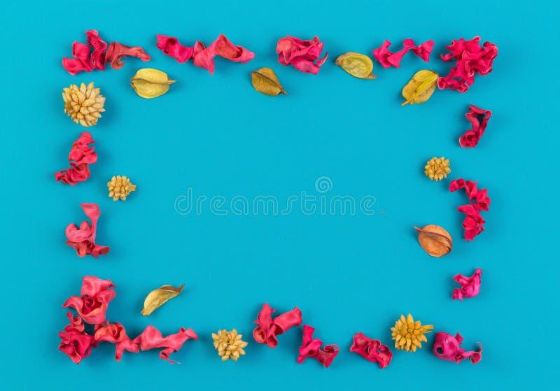 Roze en geel droog rechthoekig de grenskader van bloeminstallaties op blauwe achtergrond De hoogste vlakke mening, legt royalty-vrije stock fotografie
