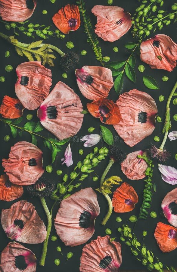 Roze en rode bloembloemblaadjes, groene takken en bladeren royalty-vrije stock foto