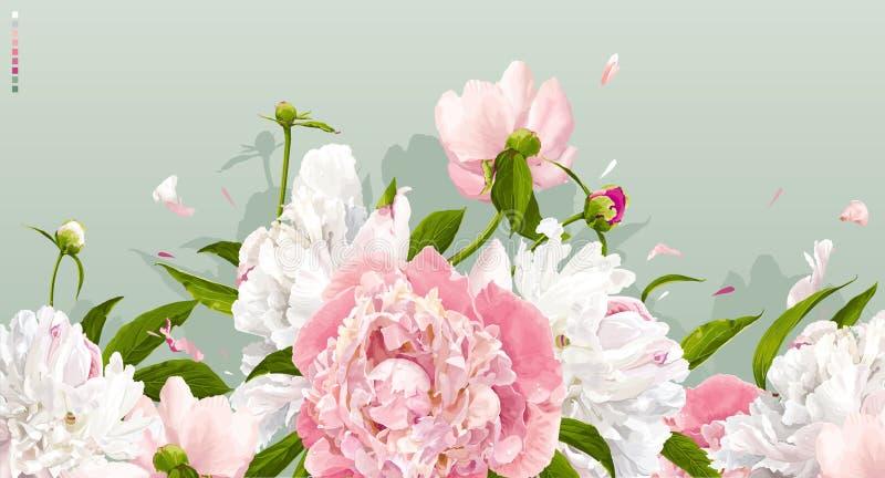Roze en witte pioenachtergrond stock illustratie