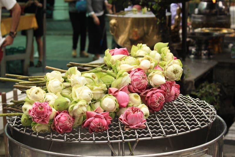 Roze en Witte Pioenen royalty-vrije stock foto