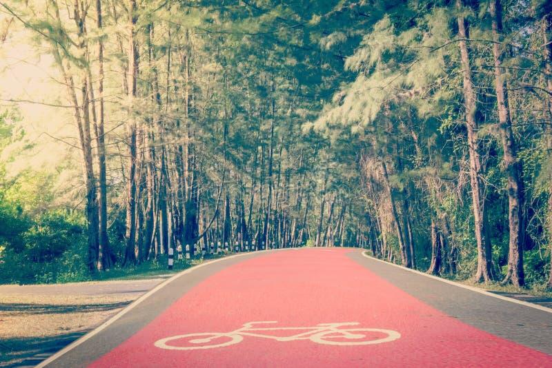 Roze fietsroute stock afbeeldingen