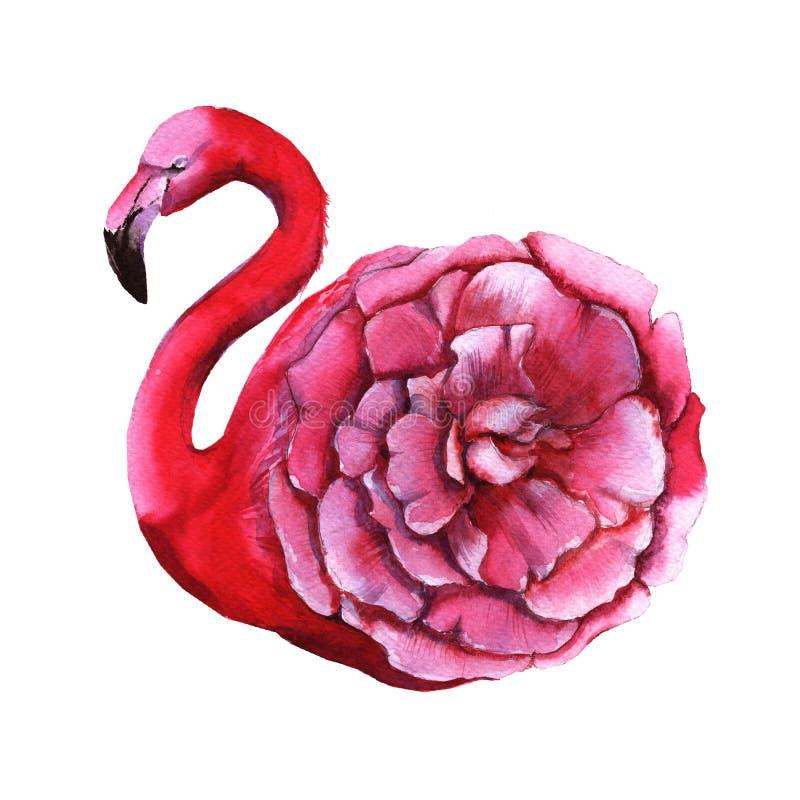 Roze flamingobloem Geïsoleerdj op witte achtergrond vector illustratie