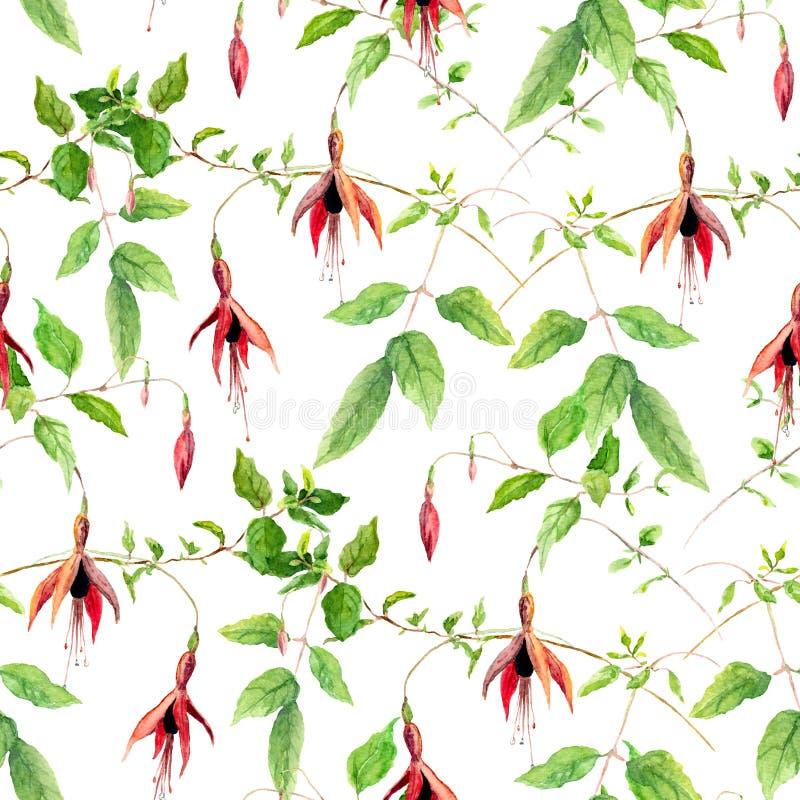 Roze Fuchsiakleurig Bloemen Het herhalen van bloemenpatroon Waterkleur royalty-vrije illustratie