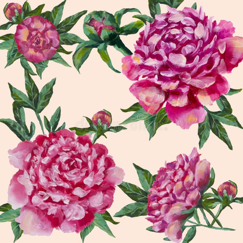 Roze geschilderde pioenenhand Pioen met knoppen en bladeren, waterverf vector illustratie