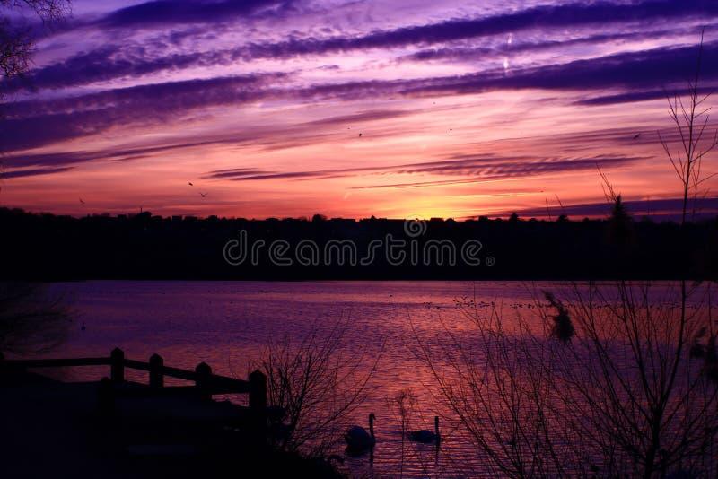 Roze gestreepte gekleurde wolken bij zonsondergang in het platteland stock fotografie