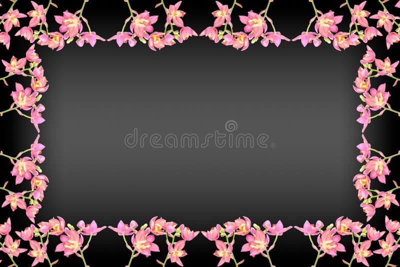 Roze grondorchidee stock fotografie