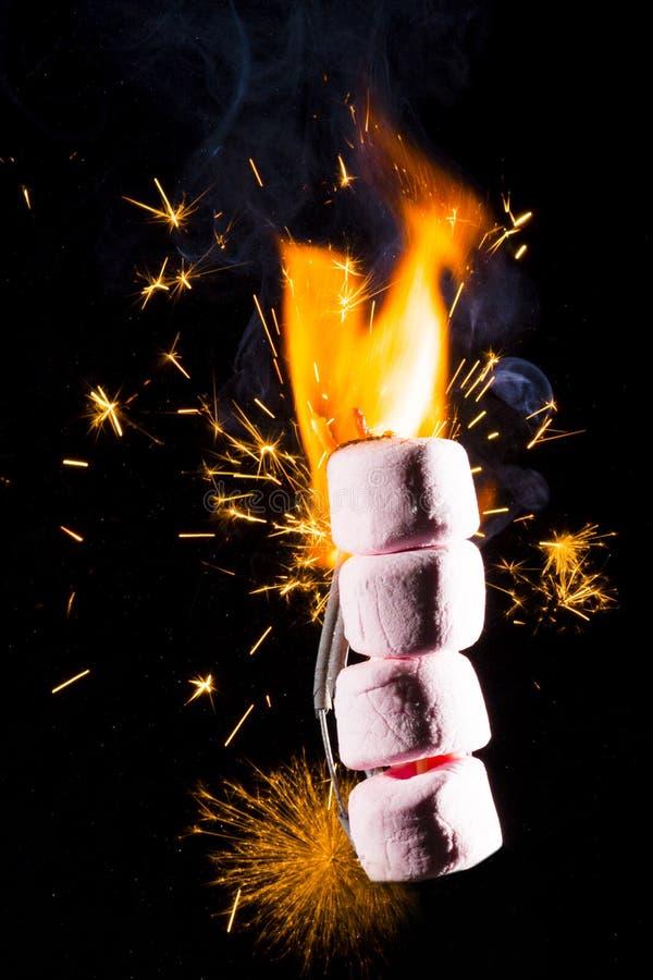 Roze Heemst op brand stock fotografie