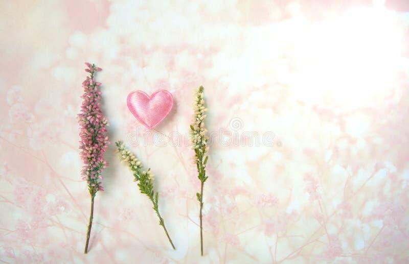 Roze heidebloem met hart voor valentijnskaartachtergrond royalty-vrije stock afbeelding