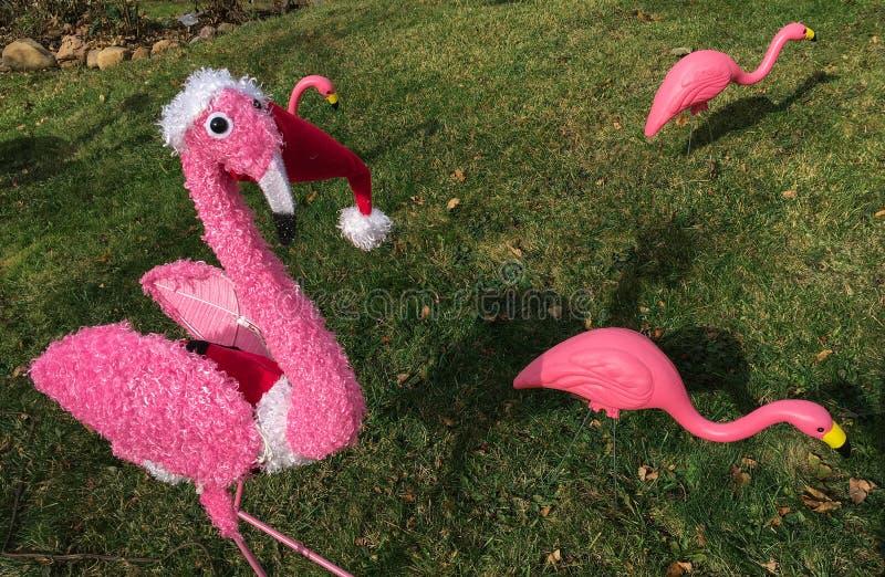 Roze het gazonornamenten die van flamingokerstmis zich op groen gras bevinden stock afbeeldingen