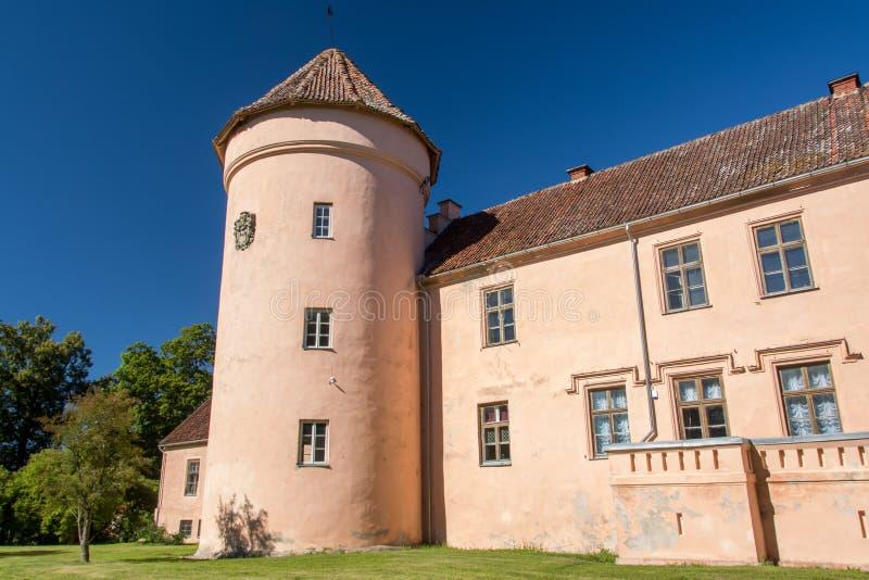 Roze kasteeltoren royalty-vrije stock fotografie