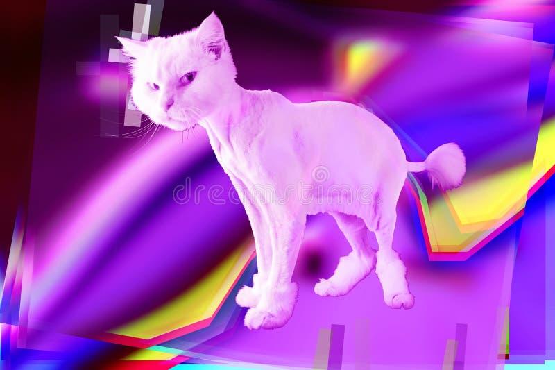 Roze kat Retro golf synth vaporwave portret van een grappige kat Concept de stijlaffiches van Memphis royalty-vrije stock foto