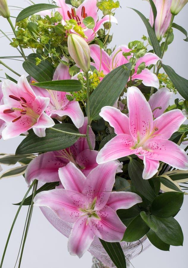 Roze leliebloem royalty-vrije stock fotografie