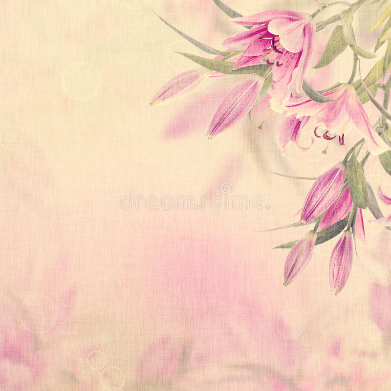Roze Leliesachtergrond stock illustratie