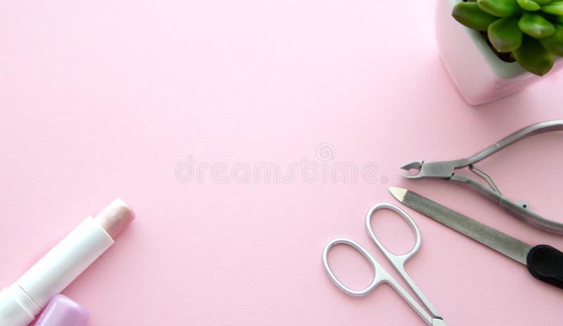 Roze lippenstift, schaar voor manicure, een nagelvijl, opperhuidtangen en een groene bloem in een witte pot op een roze achtergro stock fotografie