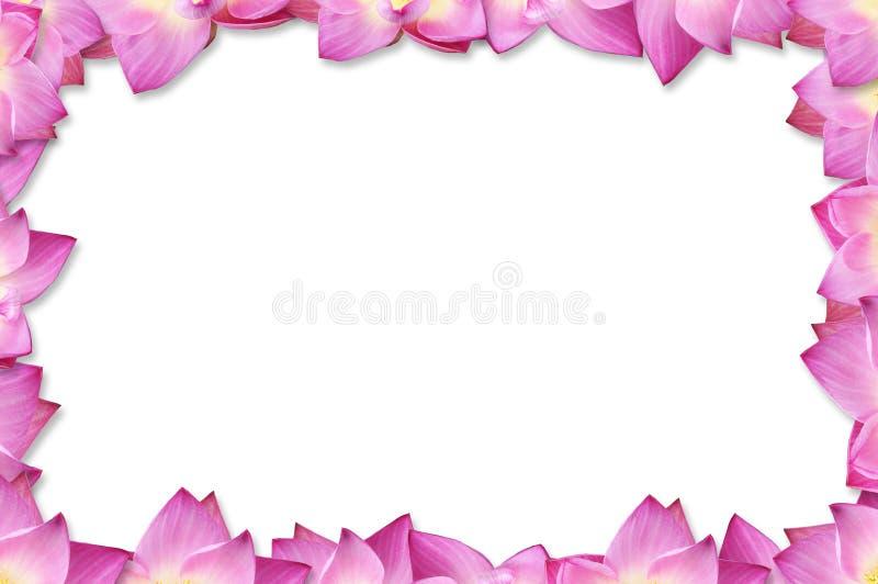 Roze lotusbloemframe achtergrond royalty-vrije stock afbeeldingen