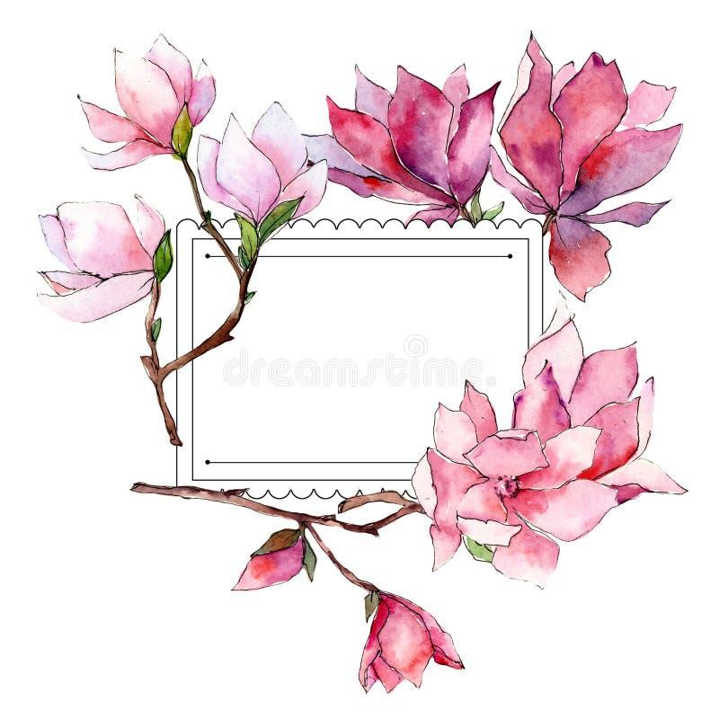 Roze magnolia Bloemen botanische bloem Het wilde kader van het de lenteblad wildflower royalty-vrije illustratie