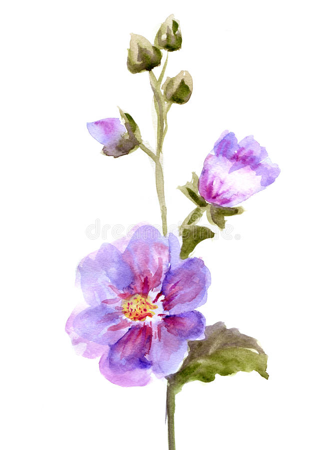 Roze Malvebloemen royalty-vrije illustratie