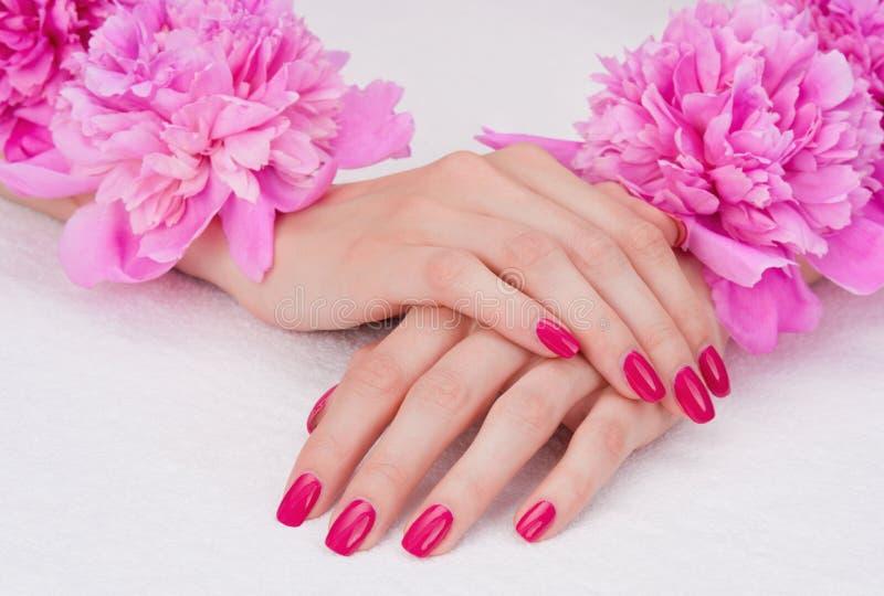 Roze manicure en bloemen stock afbeeldingen