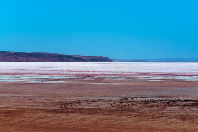 Roze meer in de woestijn stock afbeeldingen