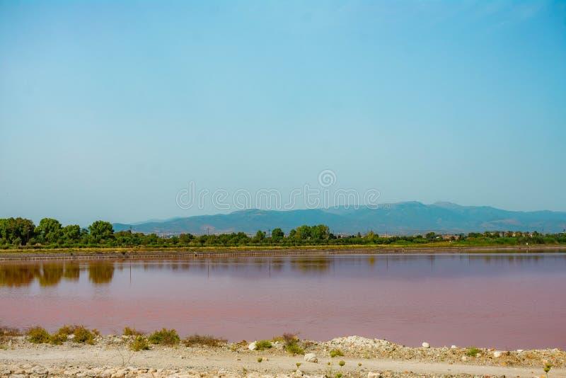 Roze meer in het Eiland van Sardinige stock afbeeldingen