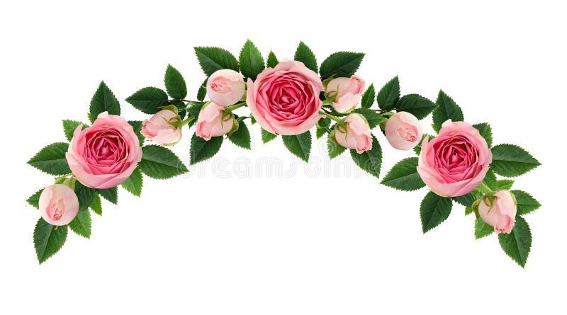 Roze nam bloemen toe en ontluikt boogregeling stock fotografie