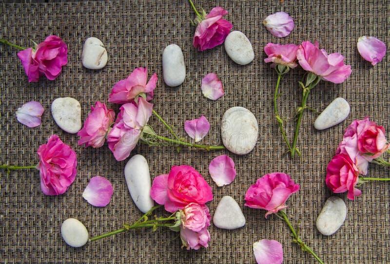 Roze nam en kuuroord overzeese stenen op rustieke achtergrond toe stock afbeelding