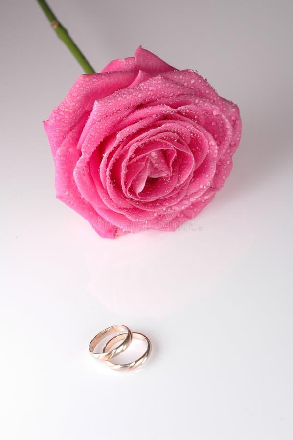 Roze nam met ringen toe royalty-vrije stock afbeeldingen
