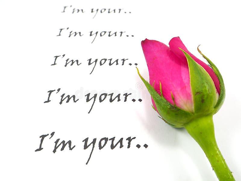 Roze nam met tekst op witte achtergrond toe stock afbeelding