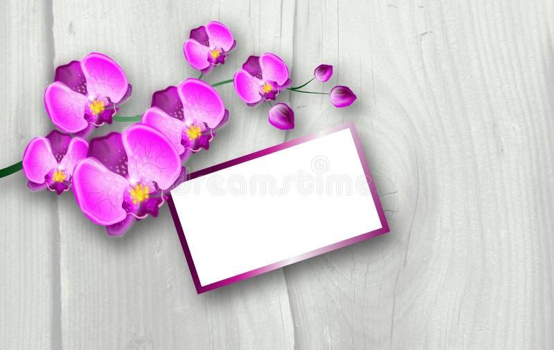Roze orchideeachtergrond royalty-vrije illustratie