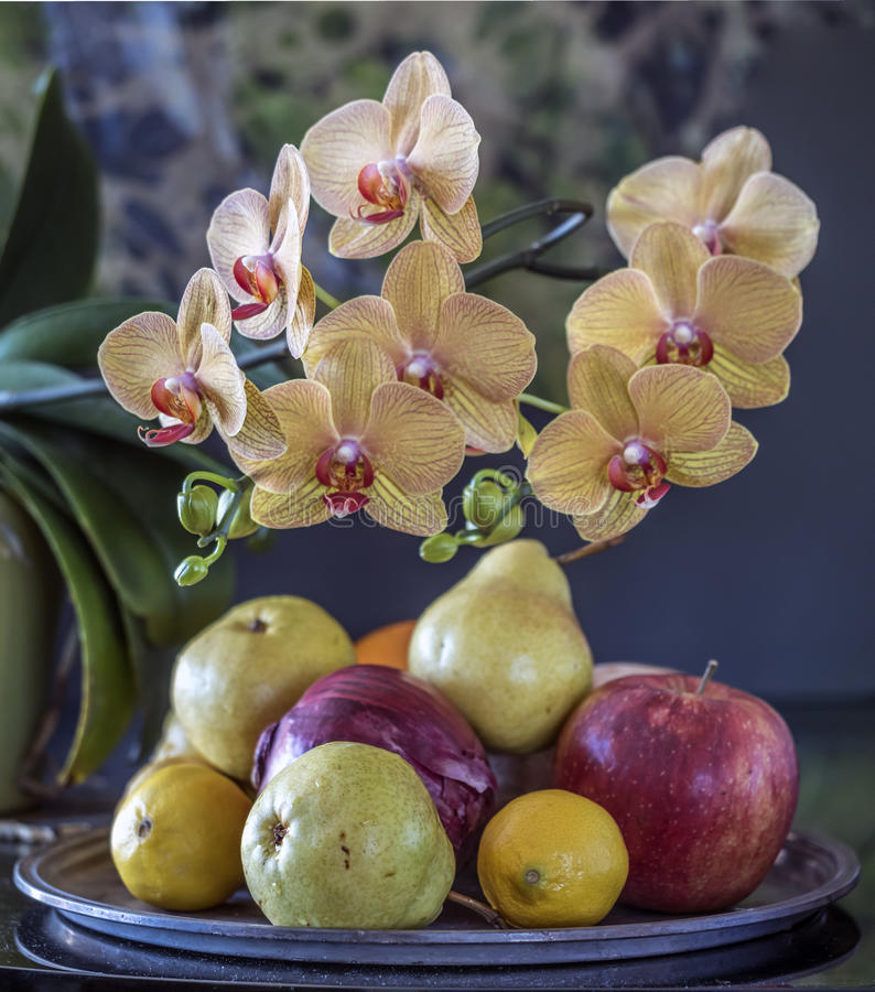 Roze orchideebloem stock afbeeldingen