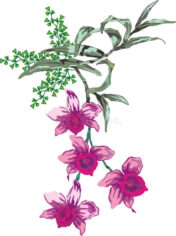 Roze orchideeillustratie royalty-vrije illustratie