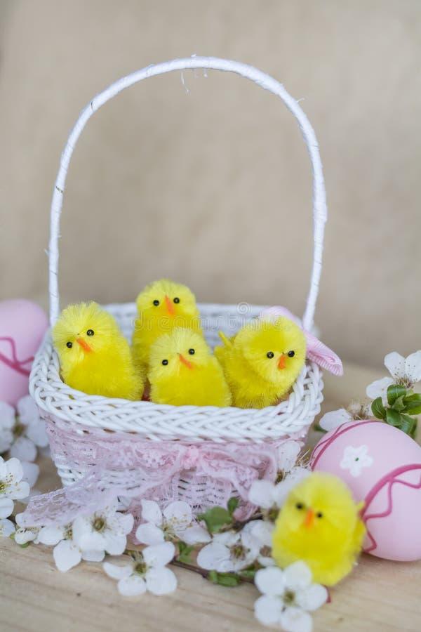 Roze paaseieren in witte mand met kersenbloemen en Pasen-kippen stock afbeelding