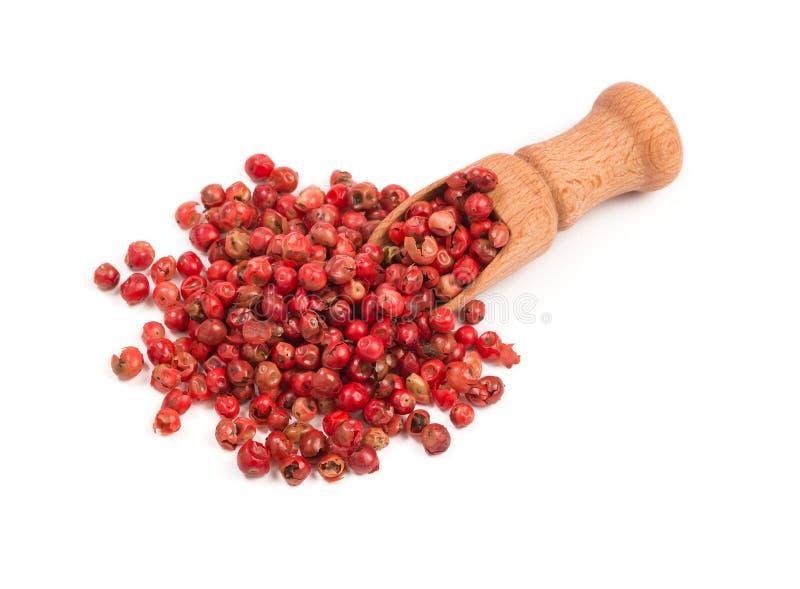 Roze peper, Rode peperbollen in een houten lepel royalty-vrije stock foto's