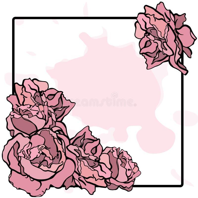 roze pioen op een zwart kader vector illustratie