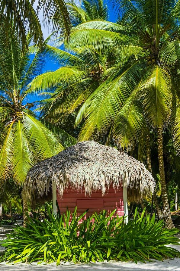 Roze plattelandshuisje met een met stro bedekt dak op Caraïbisch strand royalty-vrije stock afbeelding
