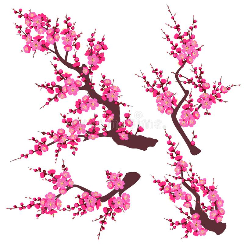 Roze Plum Blossom Branch Set royalty-vrije illustratie